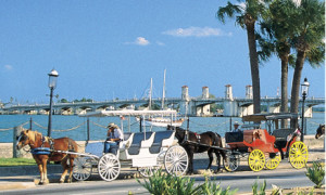 staugustine horse and carriage