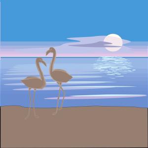 flamingos on beach